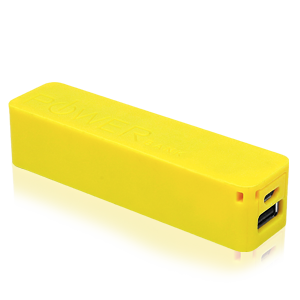 Power Brick USB Akku